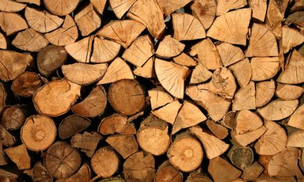Vente de bois 2020